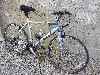 Hybrid Bike (Mountian/Road/City Bike) offer Biking