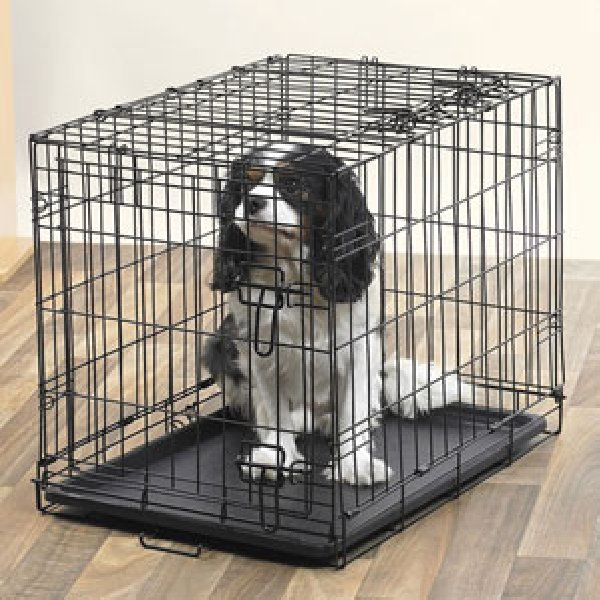 Large dog crate hardly used offer highland united kingdom for Wifi dog crate