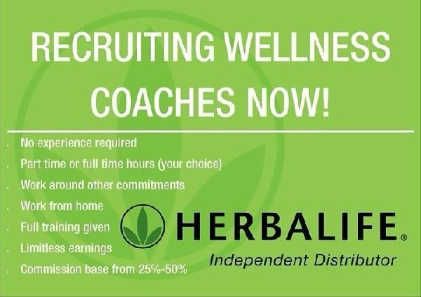 herbalife independent distributo - Independent Distributor Jobs