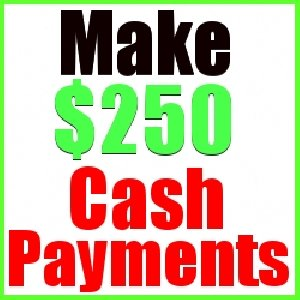Get Paid $250 Daily! offer Other Jobs